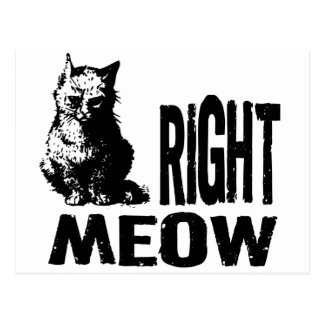 Right MEOW! Funny Evil Kitty Postcard