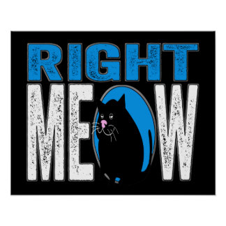 Right MEOW! Funny Kitty Cat Joke (Blue) Posters