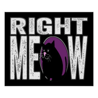 Right MEOW Funny Kitty Cat Language Poster