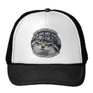 Right Meow! Trucker Hats