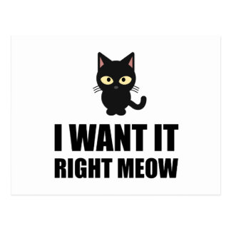 Right Meow Postcard