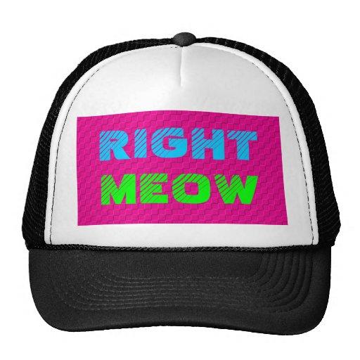 Right Meow Snapback Mesh Hats