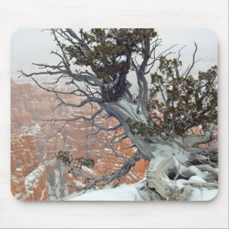 Rim Bryce Canyon Mouse Pad