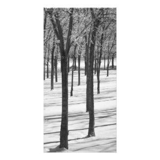 Rime in the Trees Black and White Print Personalised Photo Card