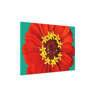 Ring-a-ring-a-roses Canvas Print
