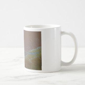 Ring Neck Pheasant Wild Bird Coffee Mug