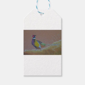 Ring Neck Pheasant Wild Bird Gift Tags