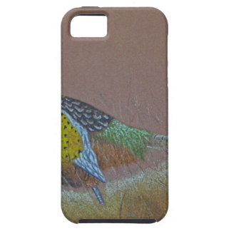 Ring Neck Pheasant Wild Bird iPhone 5 Cover