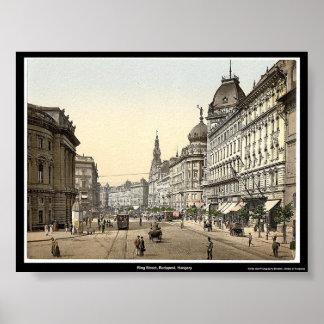Ring Street, Budapest, Hungary Poster