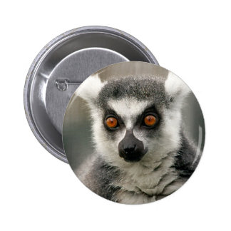 ring tail lemur buttons