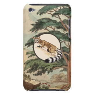 Ring-Tailed Cat In Natural Habitat Illustration iPod Touch Cases