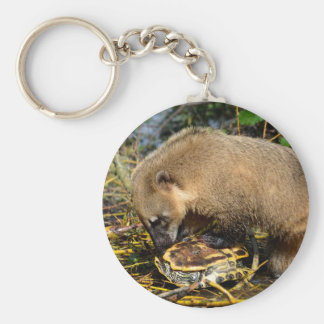 Ring-tailed Coati attacking a turtle Basic Round Button Key Ring