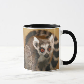 Ring Tailed Lemur 2-panel 2-tone Mug