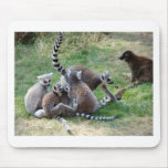 Ring tailed lemur family mousemats
