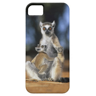 Ring-tailed Lemur, (Lemur catta), Mother and Barely There iPhone 5 Case