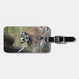 Ring-Tailed Lemur Mother And Baby Luggage Tag