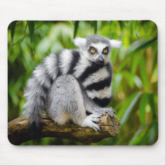 Ring-tailed lemur mouse pad