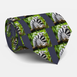 Ring-tailed lemur tie