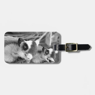 Ring-tailed lemur with baby black and white bag tag