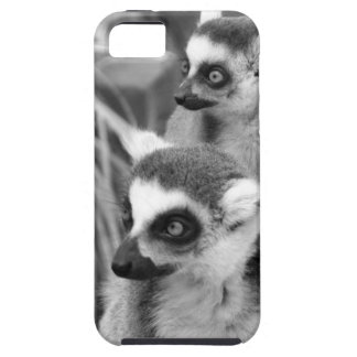 Ring-tailed lemur with baby black and white iPhone 5 covers