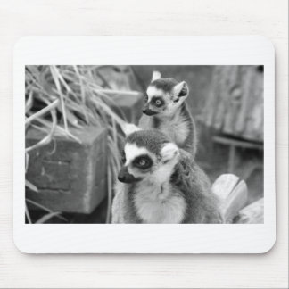 Ring-tailed lemur with baby black and white mouse pad