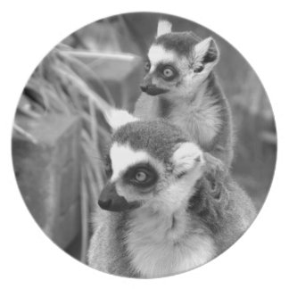 Ring-tailed lemur with baby black and white plate