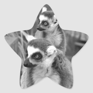 Ring-tailed lemur with baby black and white star sticker