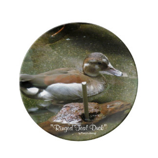 Ringed Teal Duck Porcelain Plate