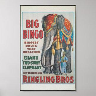 Ringing Bros Big Bingo the elephant Circus Poster