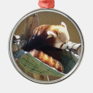 Ringtailed Panda Ornament