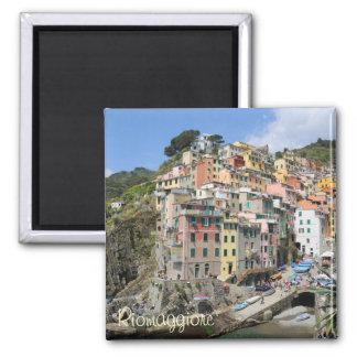 Riomaggiore village area in Cinque Terre, Italy Magnet