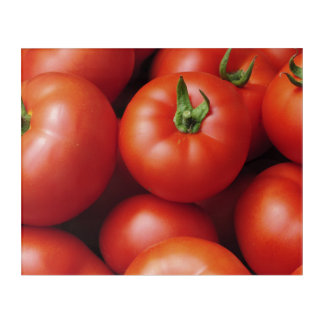 Ripe Tomatoes - Bright Red, Fresh Acrylic Wall Art