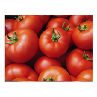 Ripe Tomatoes - Bright Red, Fresh Postcard