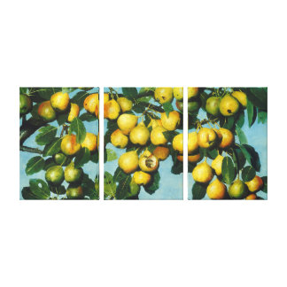 Ripening Bartlett Pears by Joseph Decker Canvas Print