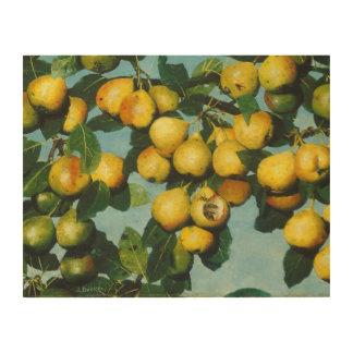 Ripening Bartlett Pears by Joseph Decker Wood Print