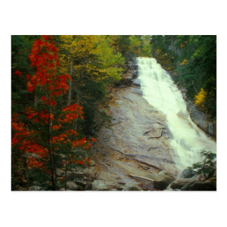 Ripley Falls White Mountains Autumn Waterfall Postcard