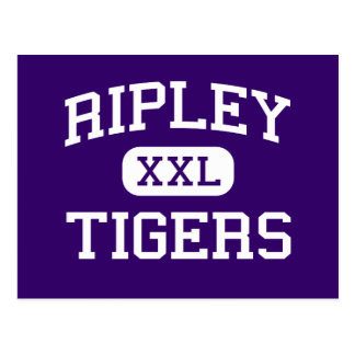 Ripley - Tigers - High School - Ripley Tennessee Postcard