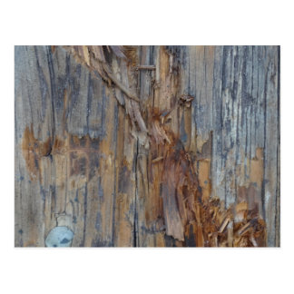 Ripped Wood Texture Postcard