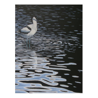 Ripples and a Avocet in contrast Postcard
