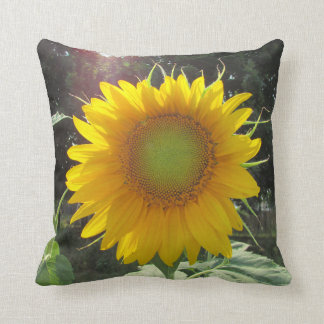 Rise and Shine Honey! Sunflower Season Cushion