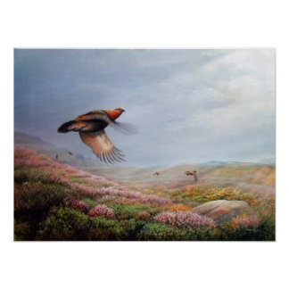 'Rising Grouse'  - print on canvas