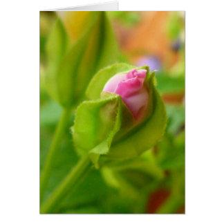 Risk to Blossom Card