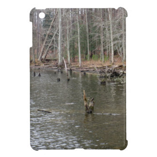 River Bank iPad Mini Covers