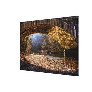 River bridge canvas print