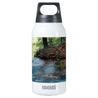 River Buttermilk Falls Delaware Gap New Jersey 0.3L Insulated SIGG Thermos Water Bottle