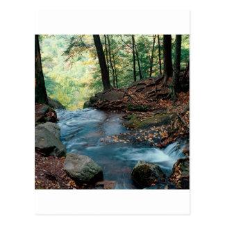 River Buttermilk Falls Delaware Gap New Jersey Postcard
