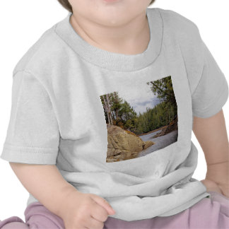 River Channel Temperate Rain Forest Canada T-shirt