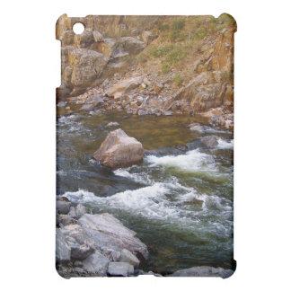 River Dreams iPad Case