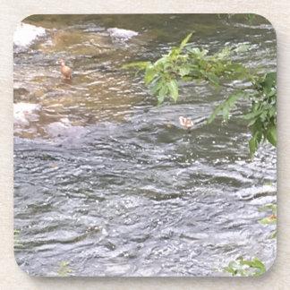 River Ducks Beverage Coasters