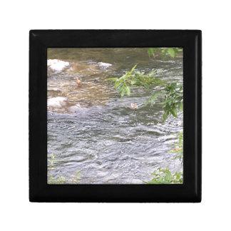 River Ducks Small Square Gift Box